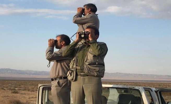 سرشماری پاییزه گونه های علفخوار درخراسان رضوی آغار شد
