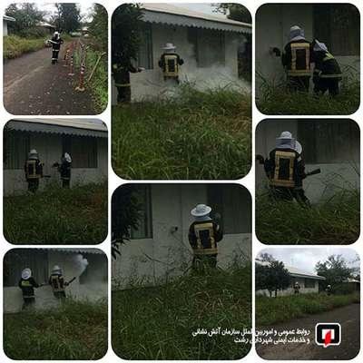 عملیات 125 در پی لانه گذاری زنبور عسل در لوله بخاری/آتش نشانی رشت