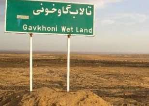 تشریح آخرین وضعیت تالاب بین المللی گاوخونی