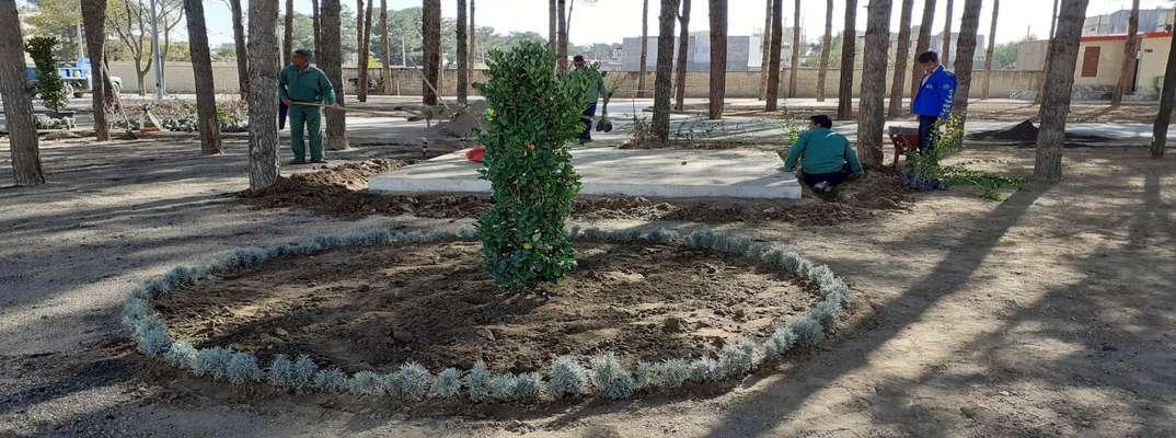 کاشت گل و گیاه، نهال کاری و کاشت چمن در بوستان جانباز توسط واحد سبز شهرداری گناباد