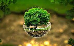 محیط زیست در ابعاد گوناگون مورد دست اندازی سودجویان قرار گرفته است