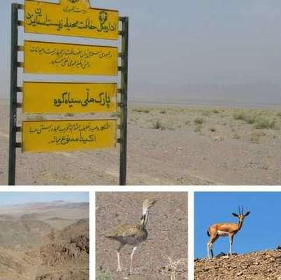 پارک ملی سیاهکوه مصداق بارزی از ارزش های زیست محیطی استان یزد