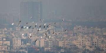 آلودگی هوا در شهرهای بزرگ از چهارشنبه/ اختلاف دمای ۴۰ درجهای ۲ نقطه کشور