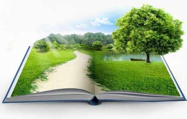 محیط زیست وارد مدرسه و خانواده شده است / تربیت یک نسل محیط زیستی