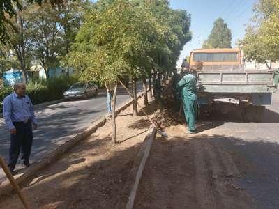 طرح پاکسازی و مناسب سازی بستر فضای سبز معابر شهری اجرا شد