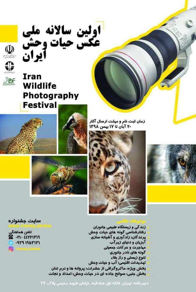 فراخوان برگزاری نخستین جشنوارهی ملی عکس حیاتوحش ایران در تهران