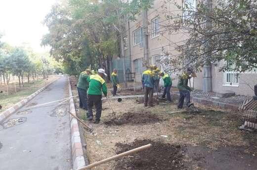 تداوم اجرای عملیات توسعه و بهسازی فضای سبز در شهرداری منطقه۶