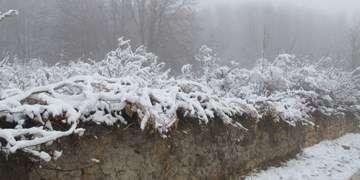 برف و باران در کشور از فردا/ سرمای زیاد در شمال کشور و مناطق زلزلهزده