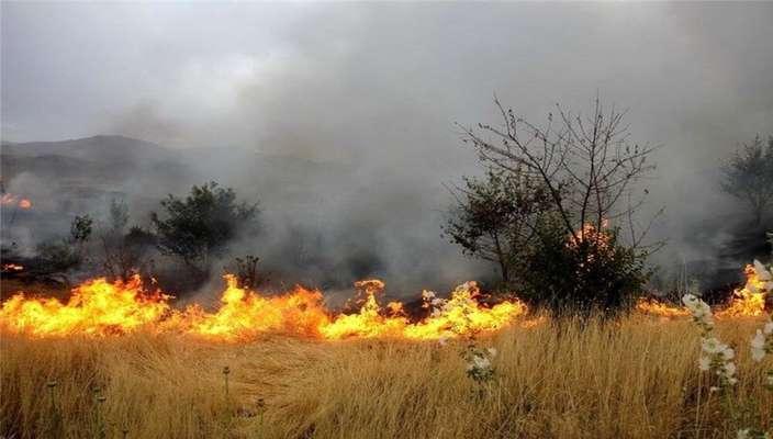 کشاورزان از سوزاندن مزارع خودداری کنند