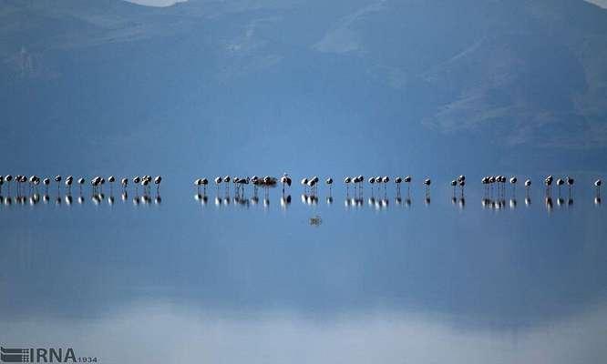  اقدامات سازه برای احیای دریاچه ارومیه تا سال آینده بهثمر میرسد