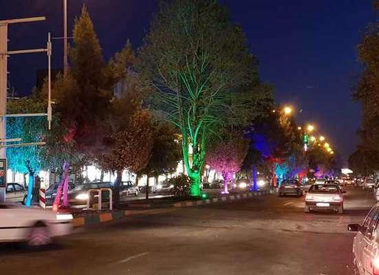 اجرای پروژه نورپردازی درختان رفوژمیانی بلوار ولیعصر