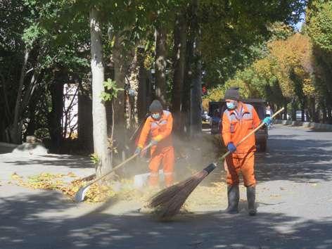 تلاش شبانه روزی پاکبانان شهرداری جهت جمع آوری برگ ها و نظافت معابر
