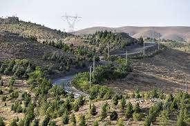 توسعه 350 هکتار از اراضی کمربند سبز جنوبی مشهد