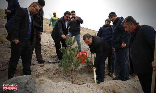 شروع عملیات کاشت ۱۳هزار اصله نهال در تفرجگاه جنگلی ائلباغی
