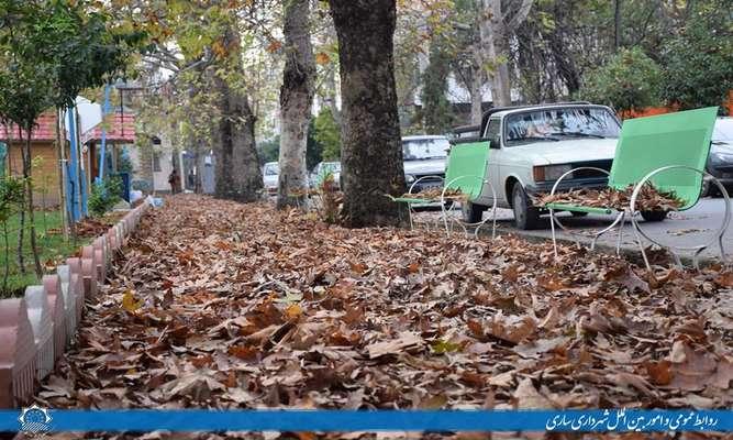 جلوه های زیبای پاییز در خیابان سعدی