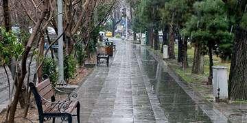 کاهش دما تا ۸ درجه و توصیه به باغداران/ جمعه در تهران باران داریم