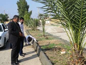 طرح تعویض جداول فرسوده شهر در دستور کار شهرداری مهران