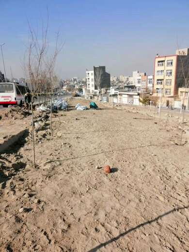 پارک حاشیهای دفاع درختکاری و گلکاری شد