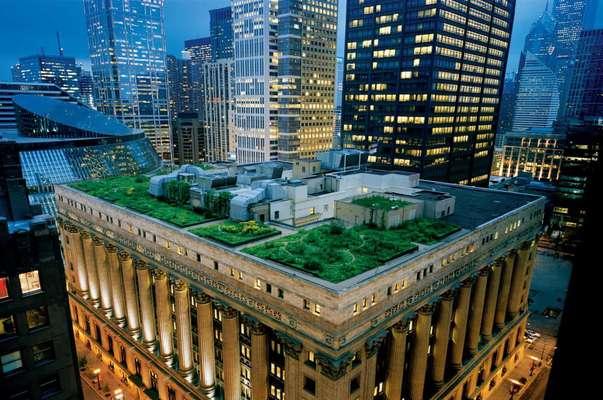 پشت بام هایی که فضای عمومی می شوند
