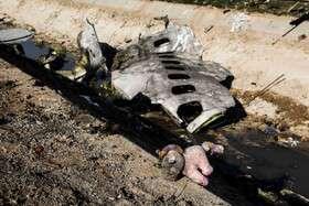 نحوه مراجعه خانواده قربانیان سقوط هواپیما به پزشکی قانونی برای اخذ نمونه DNA