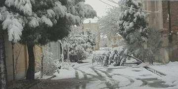 برف و باران از فردا در بسیاری از شهرها/ کاهش دما و سرما در کشور