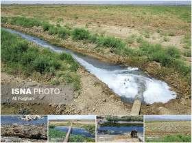 یک سوم آب کشاورزی را همدان و اردبیل مصرف می کنند
