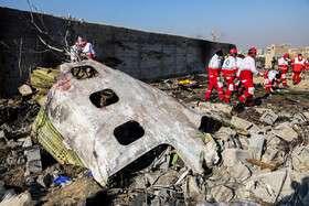 فرانسه هم برای بررسی سقوط هواپیما اعلام آمادگی کرد