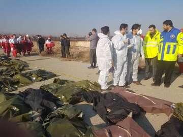 هر فردی که در سانحه سقوط هواپیما تعلل کرده باید برکنار شود