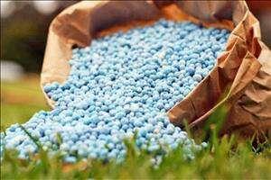 تخصیص افزون بر ۱۴ هزار تن کود برای کشت زمستانه در دزفول