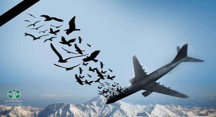 پیام تسلیت سازمان حفاظت محیط زیست در پی سانحه سقوط هواپیمایی اکراین
