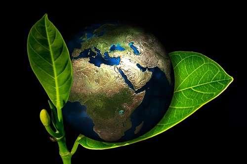 محیط زیست بینالملل در سالی که گذشت