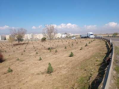 اراضی 11 هکتاری رمپ و لوپ ورودی غربی شهر بازپیرایی شد