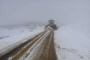 جادههای مازندران برفی و لغزنده است