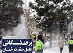 برف تکانی درختان برای جلوگیری از شکسته شدن شاخه ها/ شهروندان با برف تکانی درختان مقابل منازل، خادمین شهر را در خدمت رسانی هر چه بهتر یاری کنند