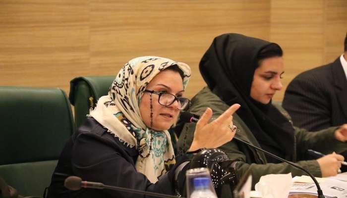 رییس کمیسیون هوشمندسازی شورای شهر شیراز خبر داد؛ طرح سیستم جداسازی آب خاکستری در شیراز اجرا میشود
