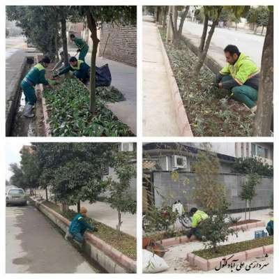 توسعه فضای سبز شهری با گلکاری در باغچه های