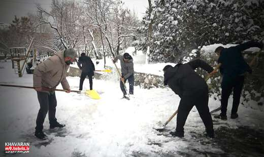 برف تکانی درختان در معابر، بوستان ها و اماکن عمومی سطح منطقه۹