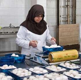 کسب و کارهای خانگی، بهترین فعالیت برای زنان