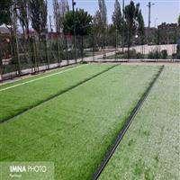 توليد 2.5 هكتار چمن رول مقاوم به گرما و خشكي در اصفهان