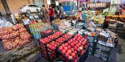 نصب ترازوهایی جهت جلوگیری از تخلفات در بازارچه های میوه و تره بار
