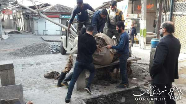 کاشت درخت در بافت تاریخی توسط شهرداری گرگان
