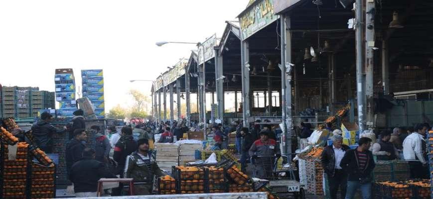 رئیس شورای اسلامی شهر شیراز: شبکه توزیع میوه و ترهبار در شیراز انحصاری و بر محور واسطهها است