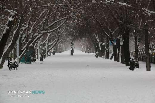 بار سنگین برف بر دوش تبریز