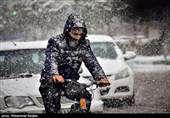 هواشناسی ایران ۹۸/۱۱/۲۳|بارش برف وبارن ۳ روزه در ۱۶ استان/ هشدار وقوع بهمن در جادههای شمال