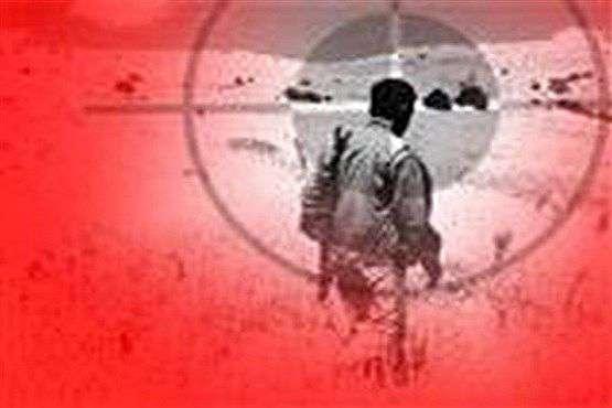 مصدوم شدن چهار محیط بان بهشهر در درگیری با شکارچیان غیرمجاز