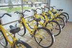 ایستگاه های دوچرخه بوستان های بانوان ارم و بهشت تجهیز می شوند