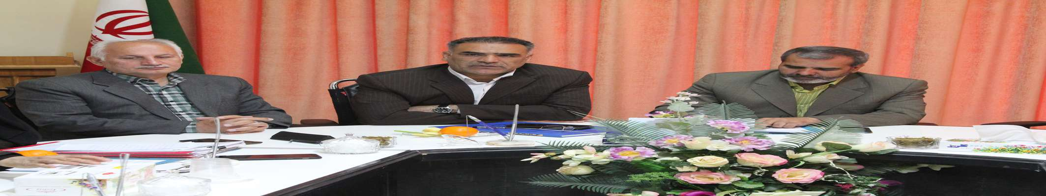 بیان گزارش حوزه فضای سبز شهرداری در شورای اسلامی شهر بیرجند
