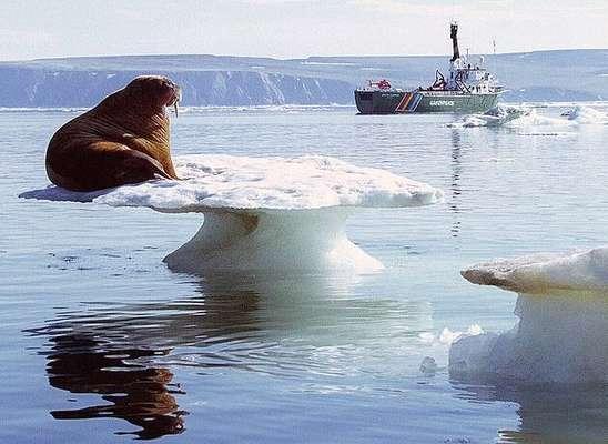 گرم شدن هواي زمين تغيير ناگهاني و چشمگيري در قطب شمال ايجاد كرده است