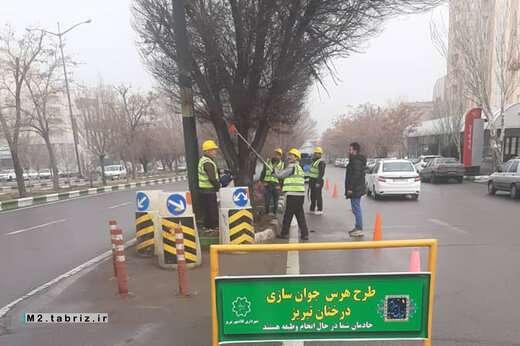 تجهیز ۱۴ اکیپ برای جوان سازی درختان توسط شهرداری منطقه ۲ تبریز
