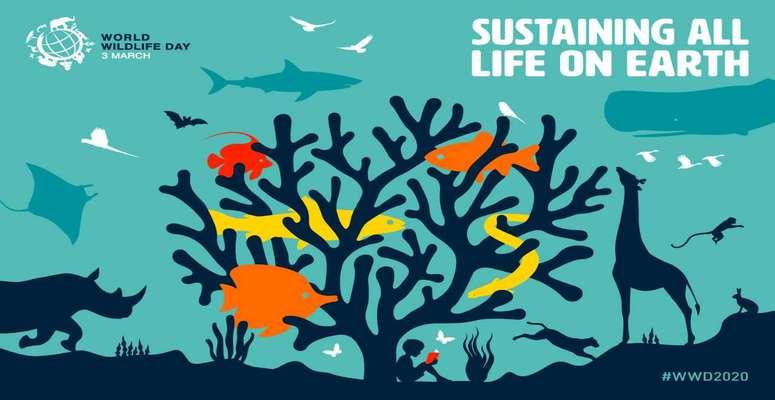 حفاظت از حیات وحش حفاظت از میراث های طبیعی کشور است